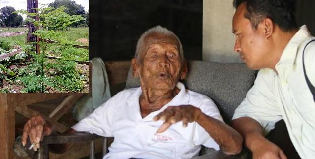Este señor tiene 88 años y nunca a ido al medico: Dice que esta hierba lo ha mantenido vivo y que pocas personas la conocen. Los médicos no conocen este secreto