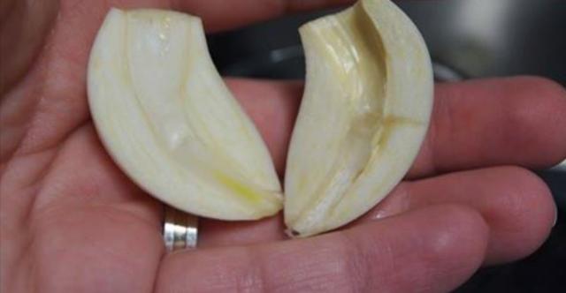 A que no te imaginas!!! Lo que detrás de un simple diente de ajo. Quedaras en shock!----Te gustaría saber lo que estas consumiendo por cada diente de ajo en tu estomago?